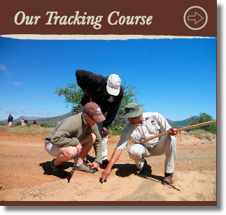 wildlife-tracking-courses